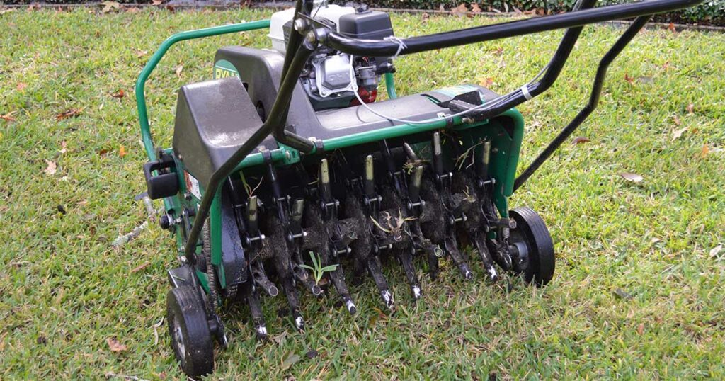 Lawn Aeration and Overseed